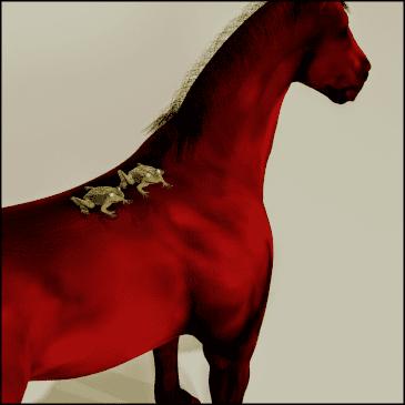 Zwei Frösche auf einem Pferd